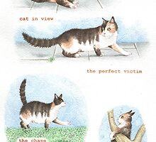 C IS FOR CATS From A Bull Terrier's Alphabet. by threebrownhares