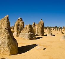The Pinnacles Dessert in Western Australia by Sonia Maltby