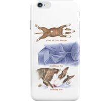 F IS FOR FUR From A Bull Terrier's Alphabet iPhone Case/Skin