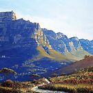 TABLE MOUNTAIN by defineart