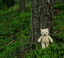 Teddy Bear, Teddy Bear turn around.... by milja