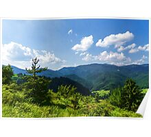 Impressions of Mountains and Forests and Trees Poster