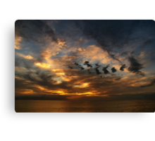 Nature is an Impressionist Painter Canvas Print