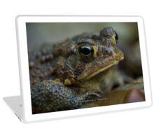 Toad in the Rain Laptop Skin