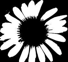 Daisy Crazy - Black & White by brattigrl
