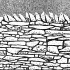 Stone wall by squirrell