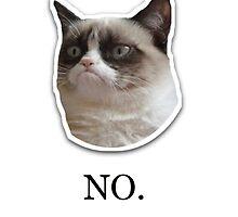 ' no ' Grumpy Cat Meme Design by Emoji Mania