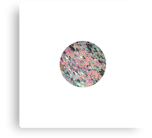 Thin section Canvas Print