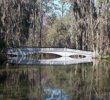 Magnolia Plantation bridge by cblackburn1500
