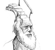 Darwin Took Steps (pencil) by Glendon Mellow