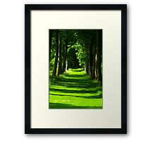 The Avenue - Thorp Perrow Framed Print