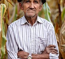Old man at corn harvest by naturalis