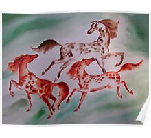 3 Spotted Horses Poster