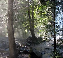 Mist at Grizzly Creek (2011) by Chris Gudger