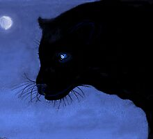 Moon Shadow by Dawn B Davies-McIninch