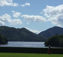 Mucross, Killarney, Co Kerry, Ireland by Connie  Danaher