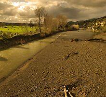 Winter Afternoon in the Manawatu by Derek Kan