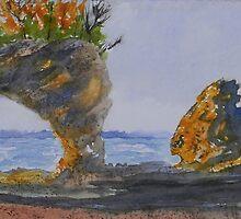 Hopewell Cape Rocks by Warren  Thompson