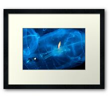 Trapped In Jelly Framed Print