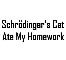 Schrodinger's Cat Ate My Homework by geeknirvana