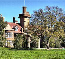 iandra castle greenethorpe nsw by geoffgrattan
