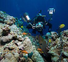 Osprey Reef - Underwater Photographer by Douglas Stetner