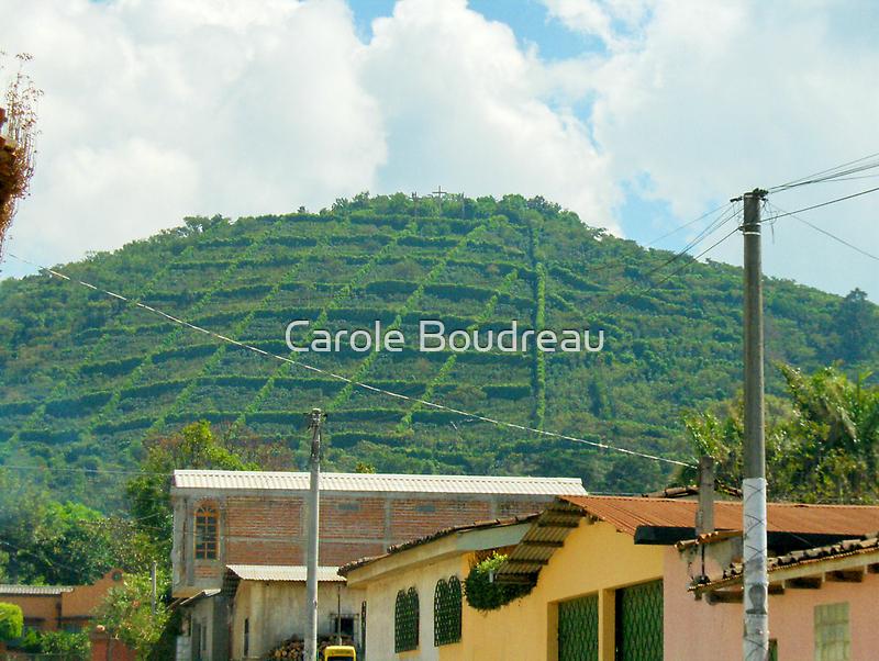 """El Salvador #3 - Village view of the """"Gourmet"""" coffee plantation. by Carole Boudreau"""