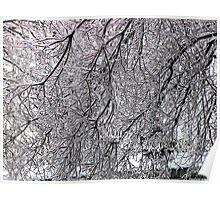 ice maze Poster