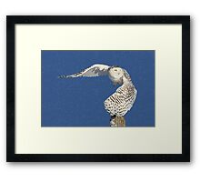 Into the beyond (snowing) Framed Print