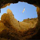 Flying High by Graham Ettridge