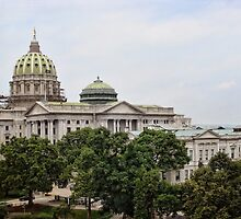State capital by vigor