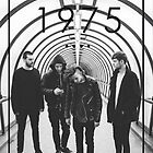 The 1975 by trechy
