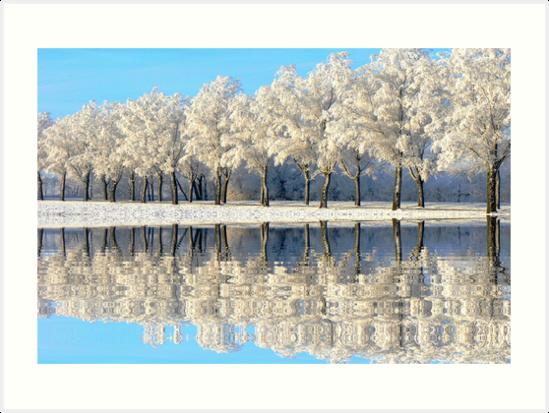 NATURES WINTER MIRROR by Johan  Nijenhuis