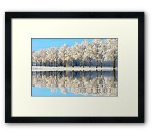 NATURES WINTER MIRROR Framed Print