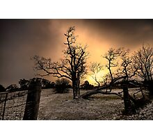 Gold - Hill End NSW Australia  - The HDR Experience Series Photographic Print