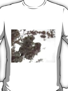Cherry tree in springtime T-Shirt