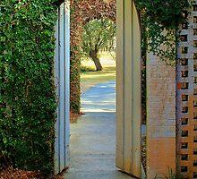 Open Doors by krishoupt