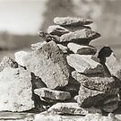 Rock Pile by Sheila Simpson