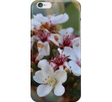 Australian Wildflowers iPhone Case/Skin