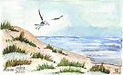 The Seagull and the beach by Maree  Clarkson