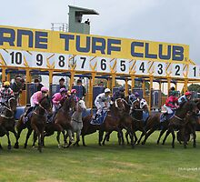 Cranbourne Races by Norm  Lewis