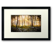 Last Obstacle (Forest Sun) Framed Print