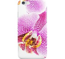Winter Orchids iPhone Case/Skin