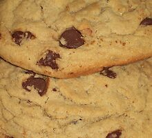 Cookies for Jan Snows Party by Michelle BarlondSmith
