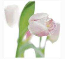 gentle pink tulips T-Shirt