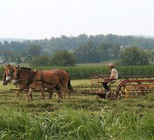 The Old Fashioned Way, near Lancaster PA. by Joseph Rieg