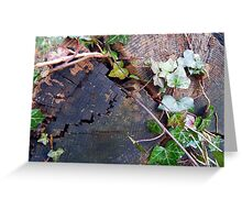 Ivy Trunk Greeting Card