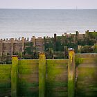Green Groynes by Pete Costick