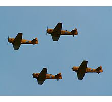 Flying Formation Photographic Print