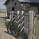 Ranch House by David  Postgate